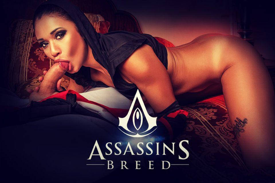Assassins Breed VR Porn Video