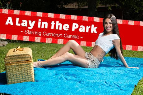 A Lay In The Park VR Porn Video